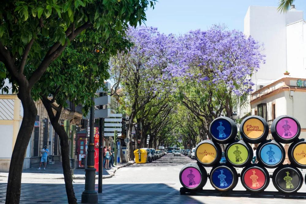 Jerez de la Frontera i Andalucia med jacaranda-trær