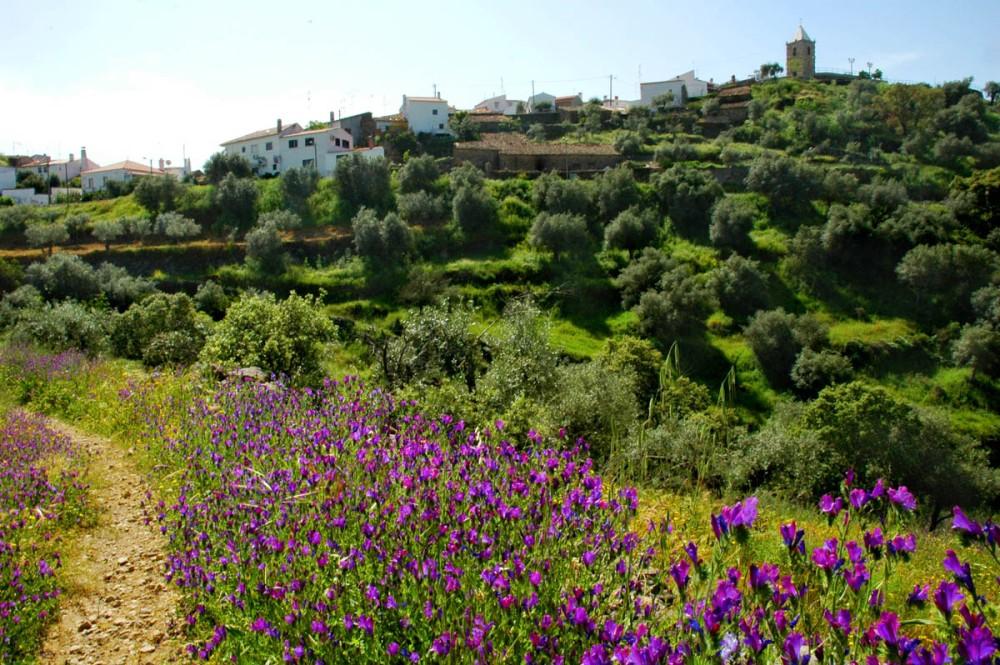 Castelo Branca-regionen i Portugal om våren